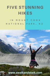 Day walks in aoraki mount cook national park a walk and a lark five stunning hikes in aoraki mount cook national park publicscrutiny Image collections