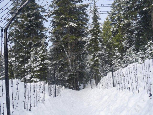 The Grouse Mountain Light walk