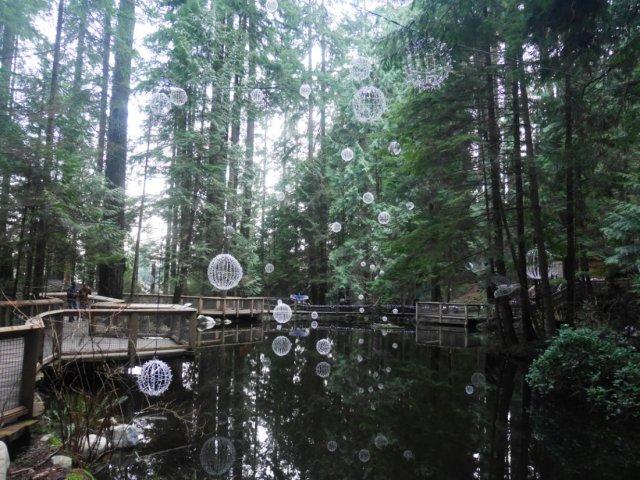 The capilano suspension bridge park