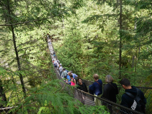 Lynn Canyon Suspension bridge is so busy!
