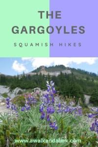 The Gargoyles - Garibaldi Provincial Park - flowers