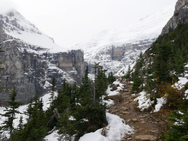 The path to Mount Lefroy