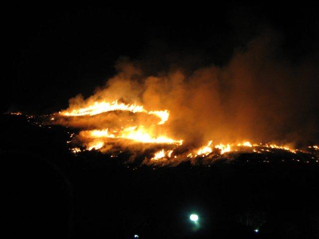 Wakakusayama on fire