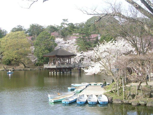 Araike pond and boats