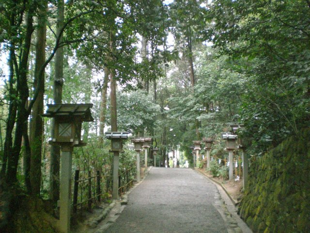 Pathway lined with lanterns on Yamanobe no michi