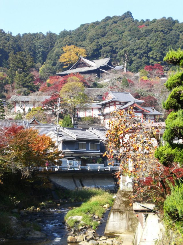 First views of Hasedera temple