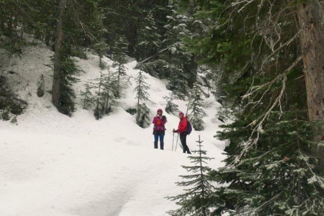 Snowy hike up the Windy Joe trail