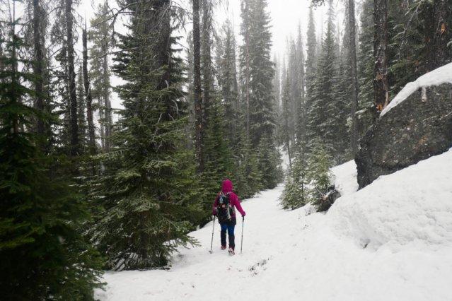 Heading back through the snow