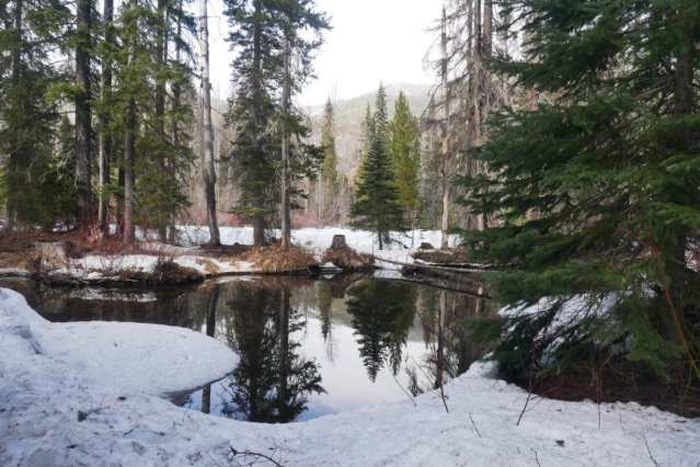 Back to the Similkameen trail