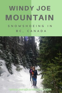 Windy Joe Mountain - Manning Park snowshoeing