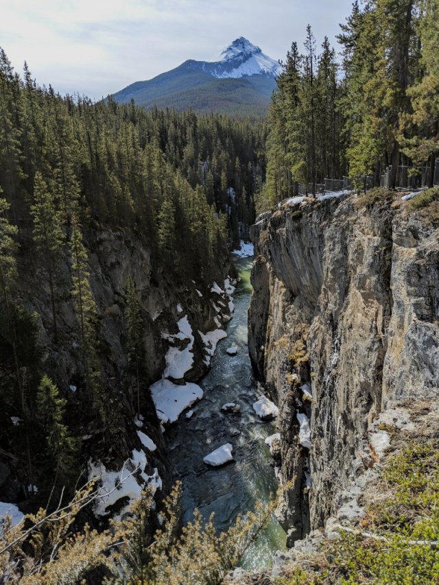 Looking down the Canyon at Sunwapta Falls