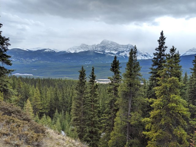 Occasional gaps in the trees give Banff views