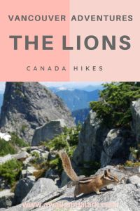 The Lions - Our most epic hike so far this year!