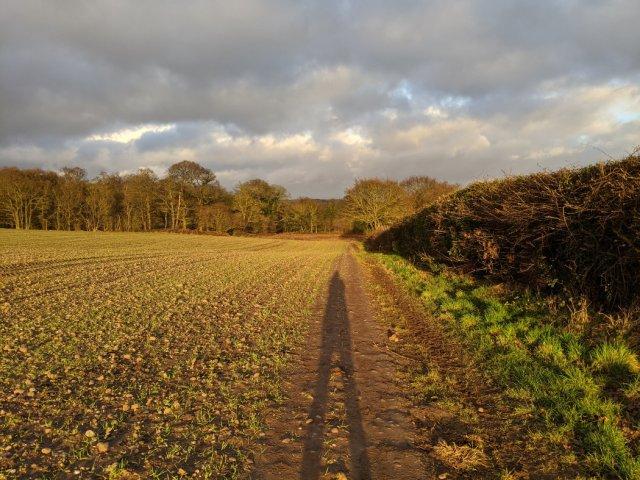 Pretty land near Caverton