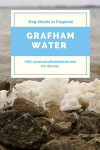Grafham Water a fab area for dog walks