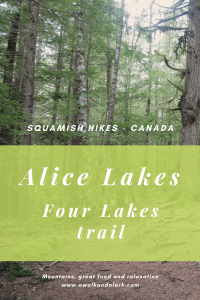 Alice Lakes - Four Lakes Trail through the forest
