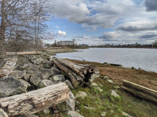 Fraser River Park - Looking East along the Fraser River