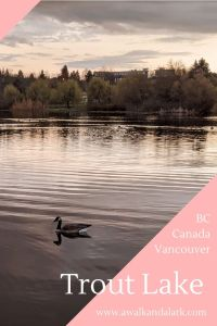 Trout Lake and John Hendry Park - Vancouver Canada