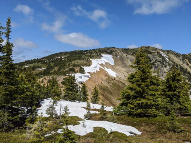 See all the snowy cornices