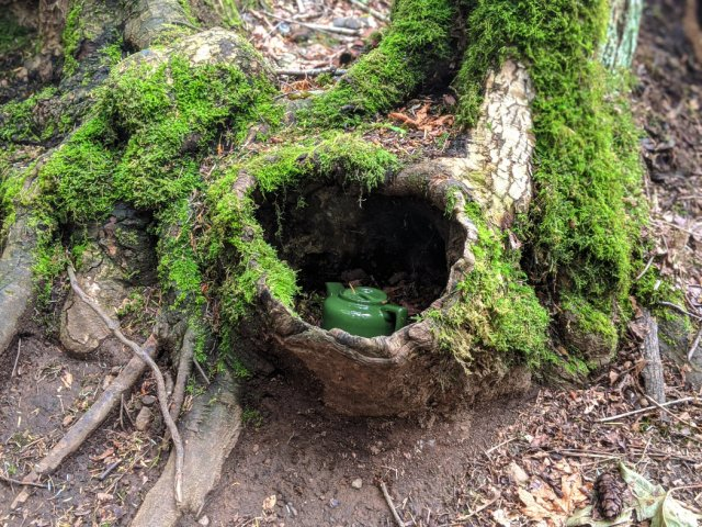 Green teapot shown up with moss