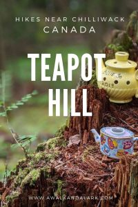 Teapot Hill is a quirky, family friendly hike near Vancouver and Chilliwack, Canada
