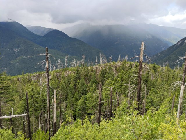 Lake route views - the burnt trees are from a wildfire in 2004