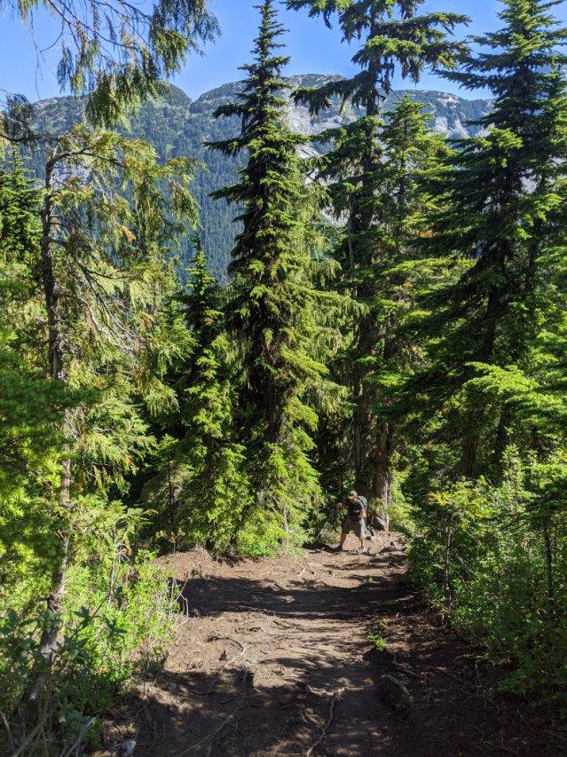 Looking back on the needle peak trail