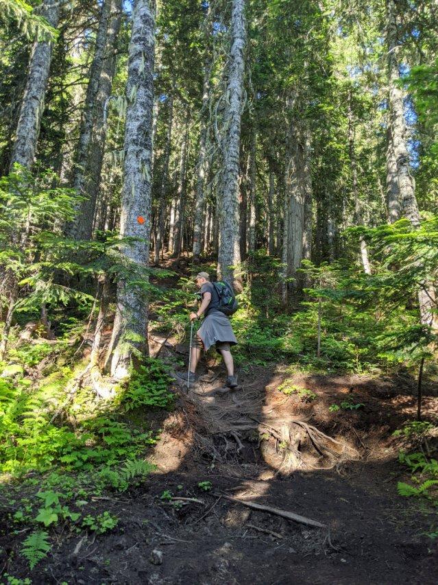 Steep path on the needle peak trail
