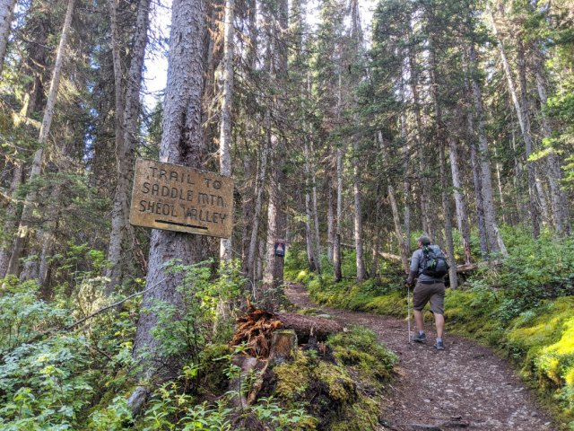 Trail to Saddle Mountain and Sheol Valley