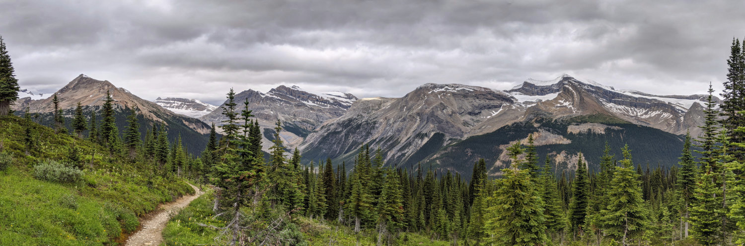 Panoramic views up in the Alpine meadows on the Whaleback Trail