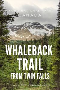 Whaleback Trail views towars Litttle Yoho Valley on the way back to Twin Falls