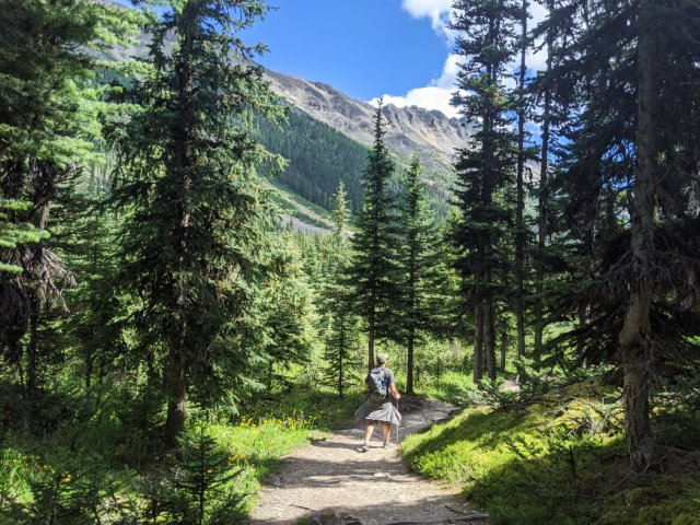 Beautiful trail to Consolation Lakes