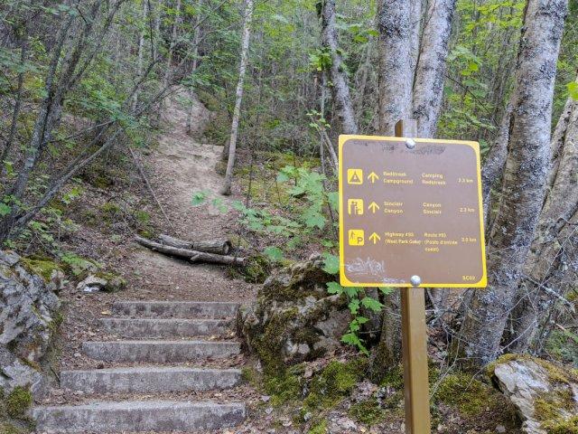 Start of the Juniper Loop trail