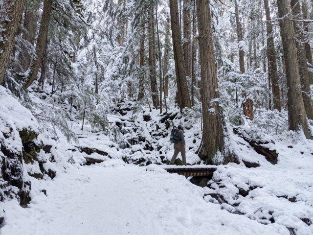 The Garibaldi Lake trail starts with switchbacks