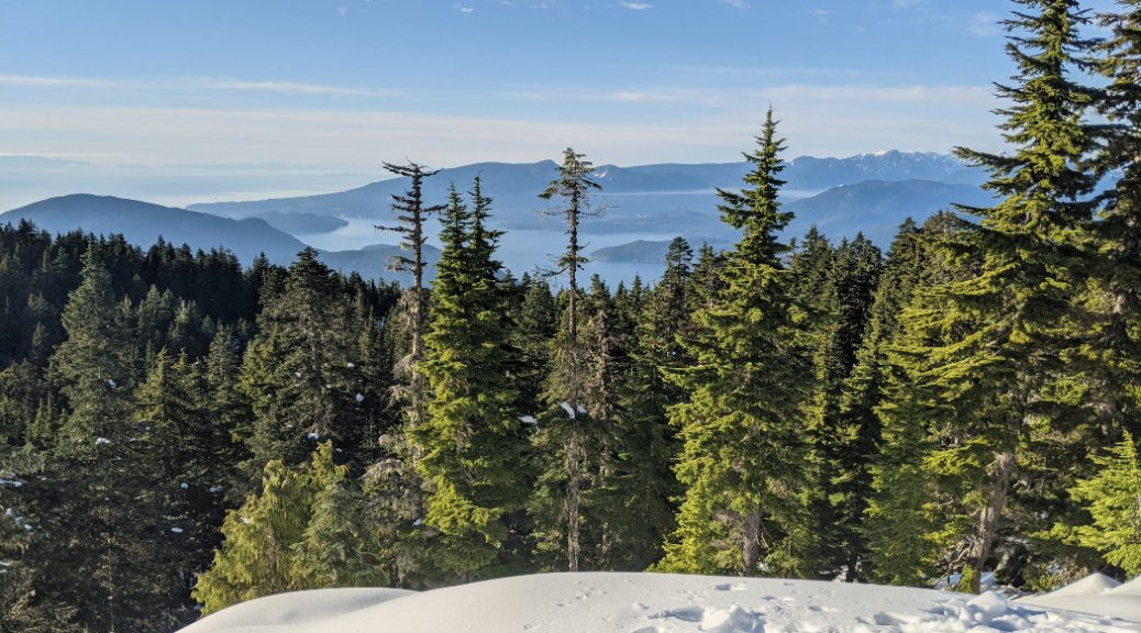 Howe Sound above the trees