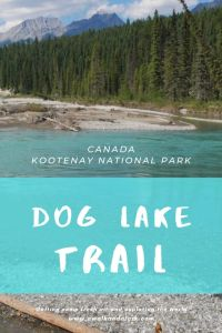 Dog Lake trail with beautiful views of the Kootenay River - Hikes in the Canadian Rockies