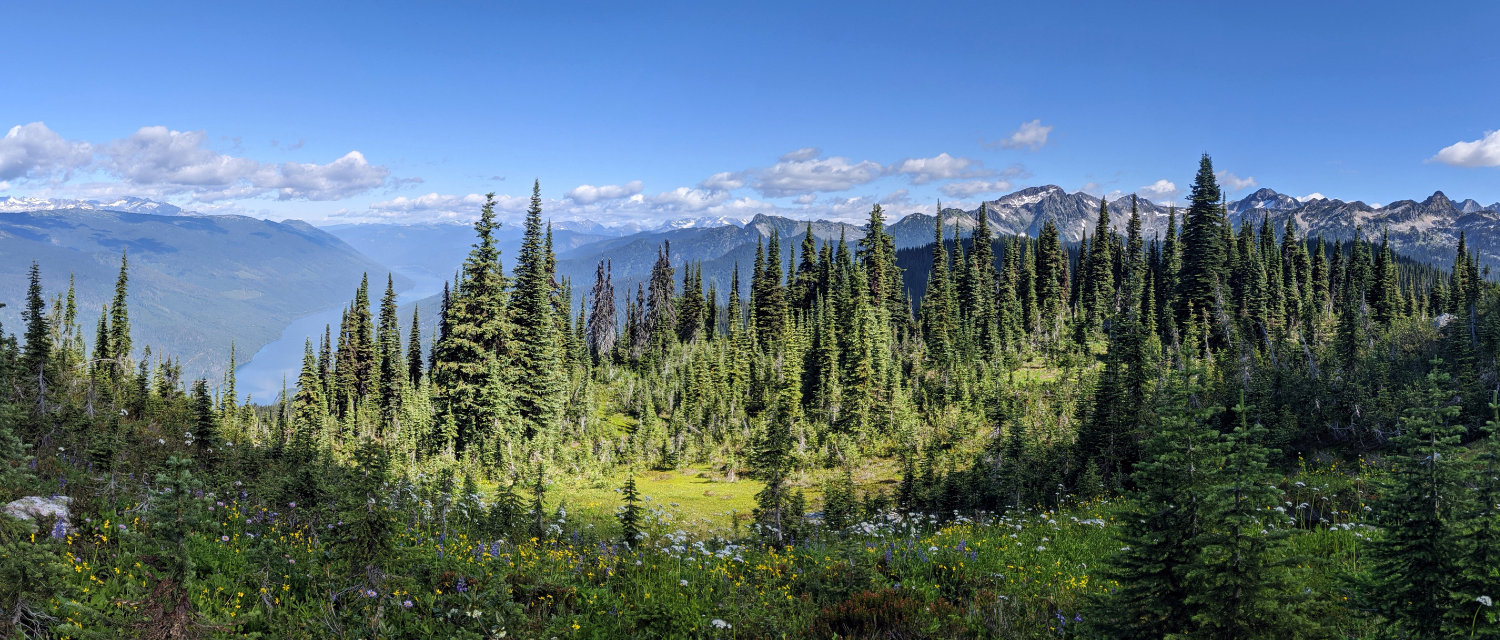 Gorgeous views of the meadows in the sky - Revelstoke National Park