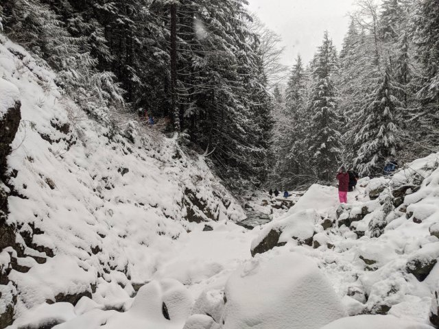 Looking backwards from Norvan Falls in the snow