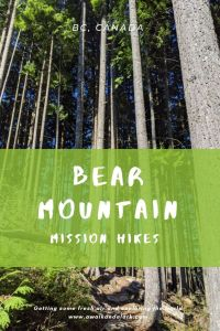 Bear Mountain loop hike - Fun, family friendly walk near Mission