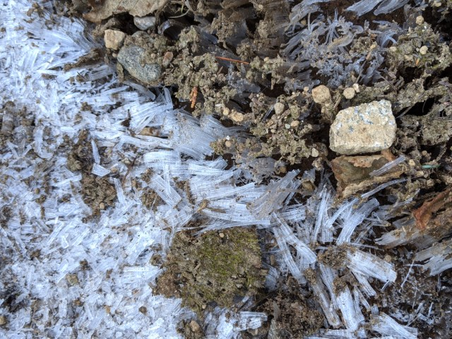 Frost on bear mountain