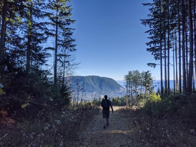 Views near the top of Bear Mountain