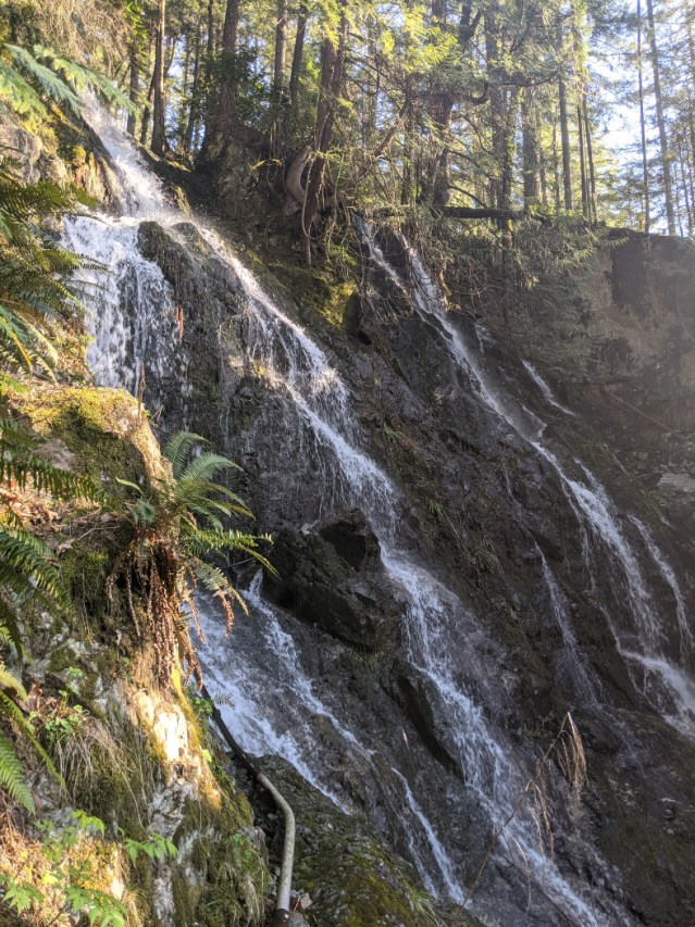 A Waterfall as we went off trail