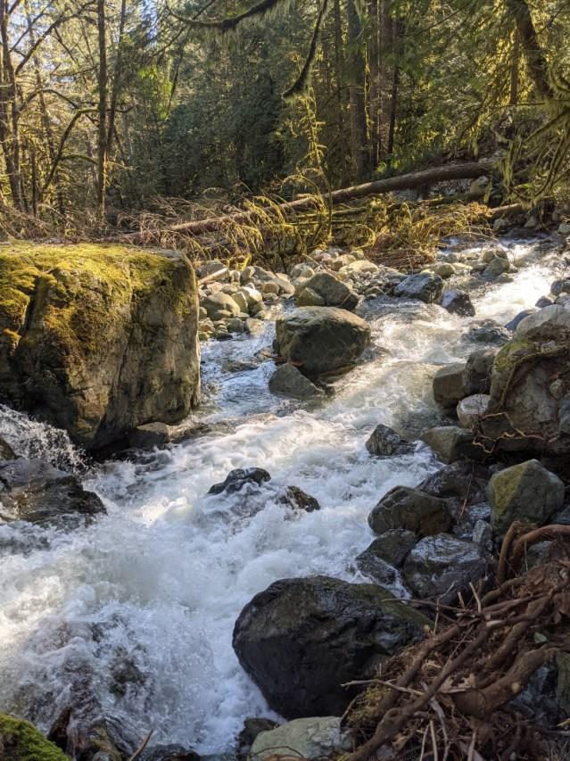 Shone Creek