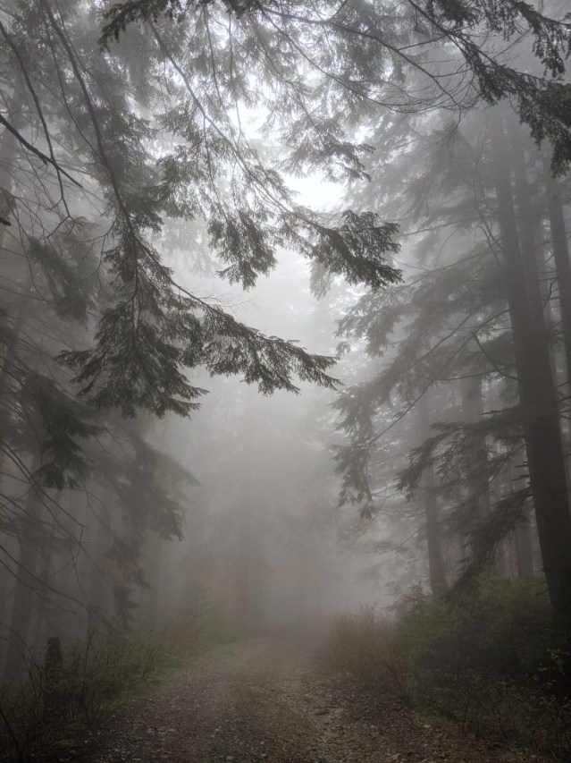 Heading down the Grouse Mountain Highway