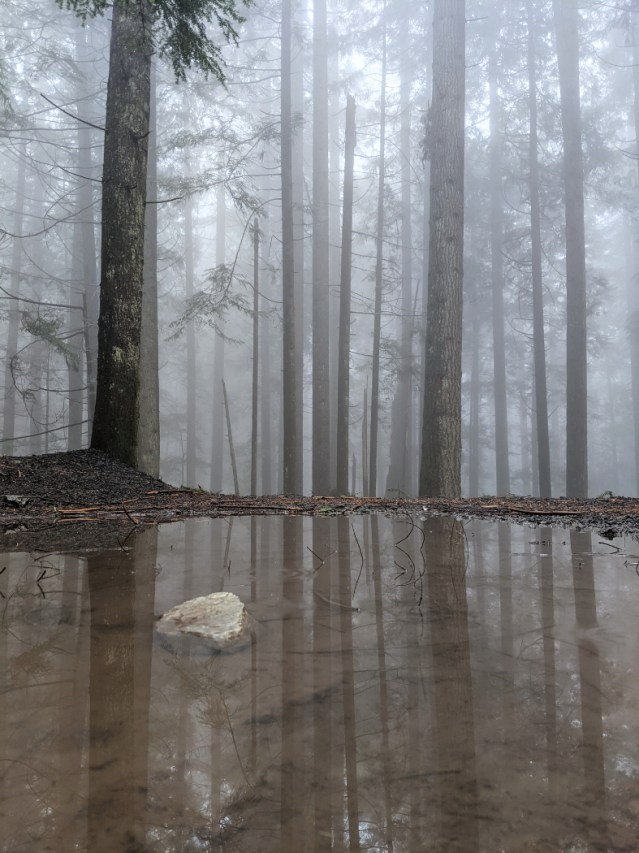 A puddle along the Grouse Mountain Highway
