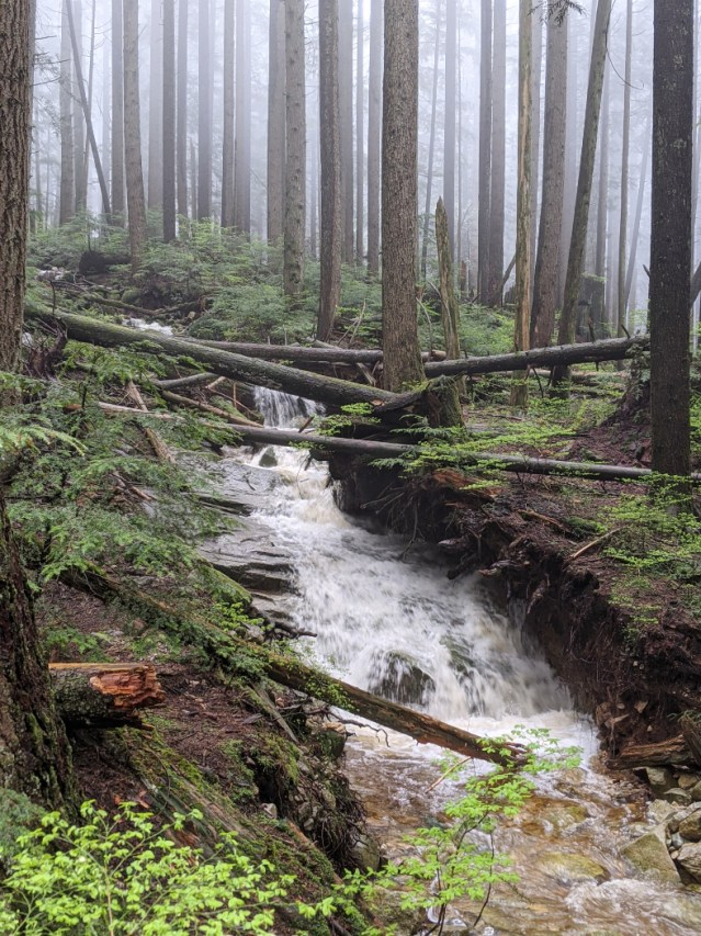 One of the mini waterfalls along the Grouse Mountain Highway