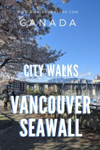The Vancouver Sea Wall is a pretty, flat hike around the city with plenty of fantastic views