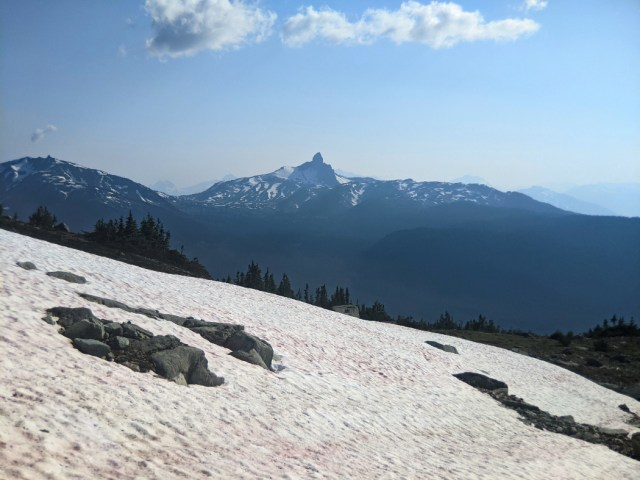 Black Tusk from the trail up to Flute Summit