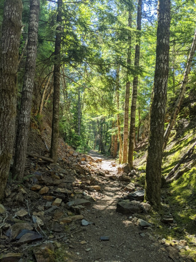 Ladner Trestle trail along the trainline