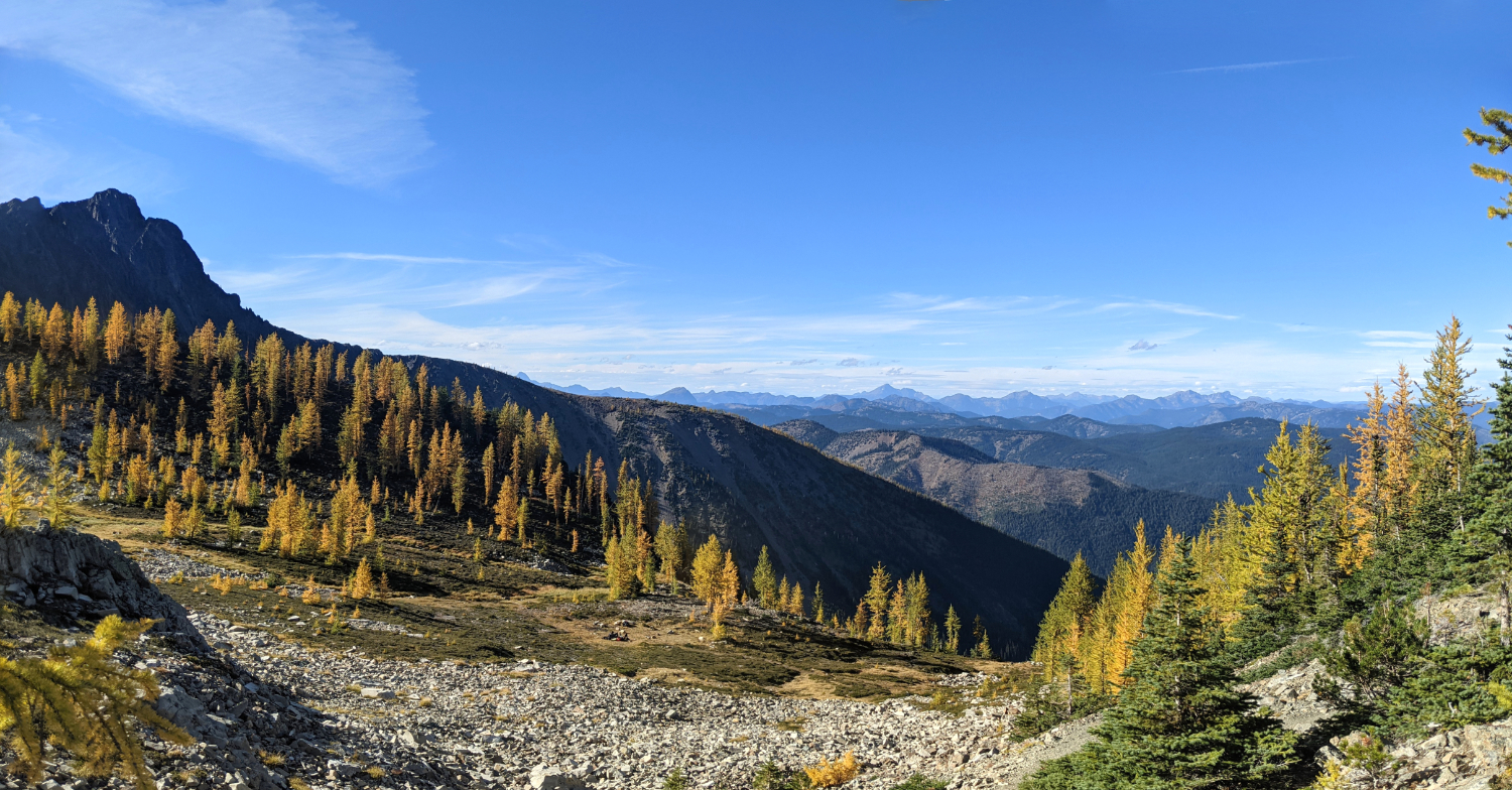 Golden larches from just below the ridge on Frosty Mountain
